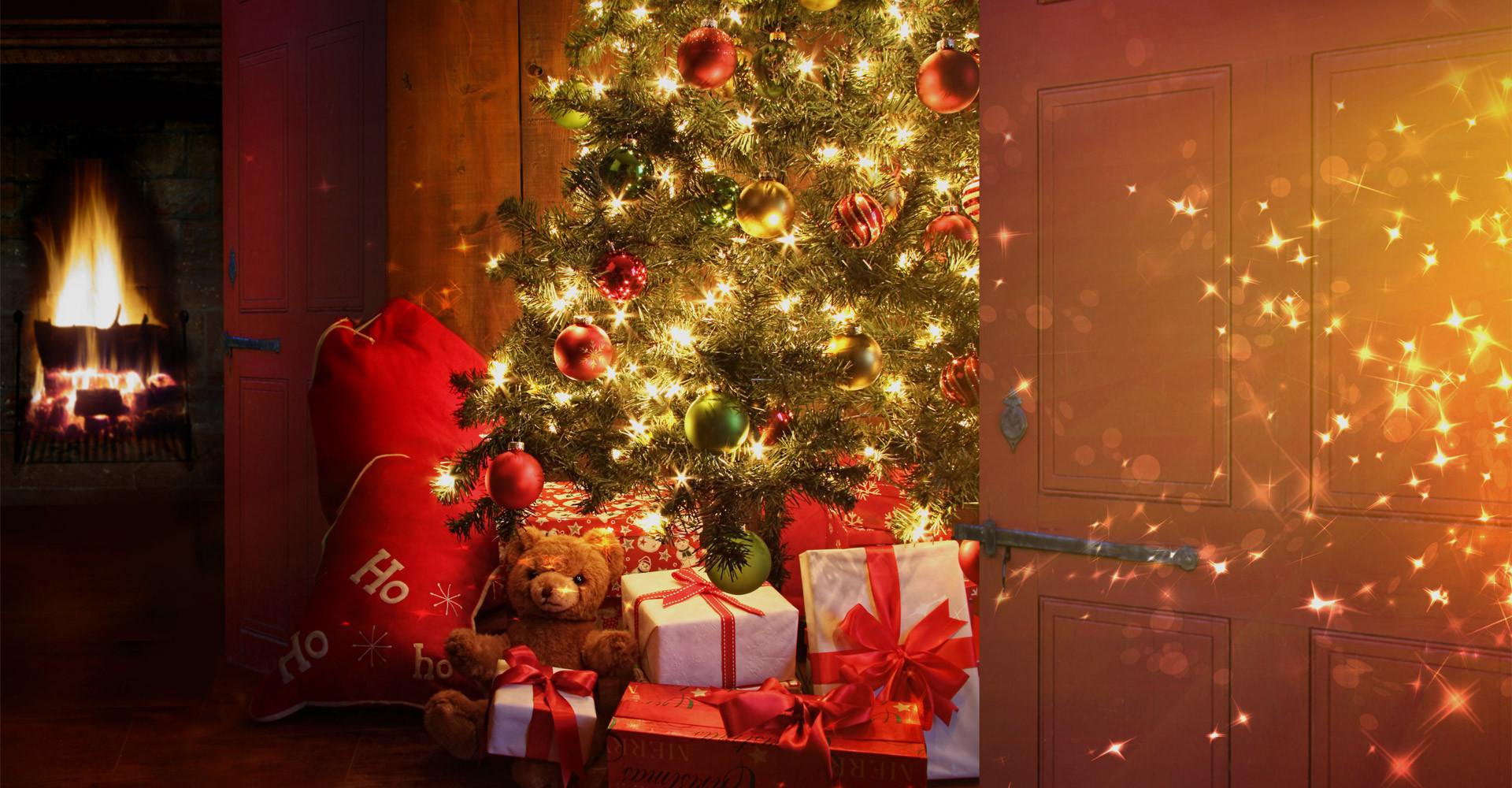 De mooiste Nordmann Excellent kerstboom vanaf € 15,-