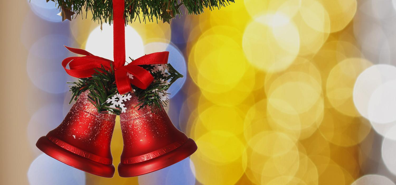 Veelgestelde vragen over Nordmann Excellent kerstbomen